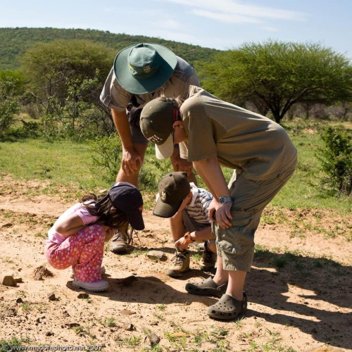 Family safaris (17)