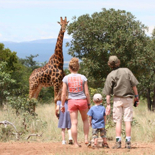 Family safaris (26)