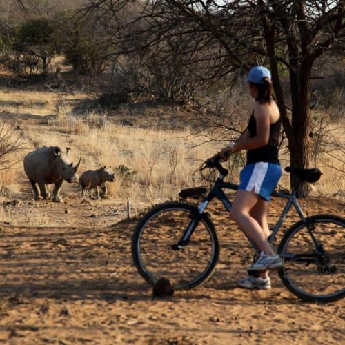 Cycling at Ants (1)