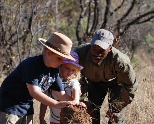 Family safaris (16)