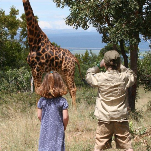 Family safaris (4)