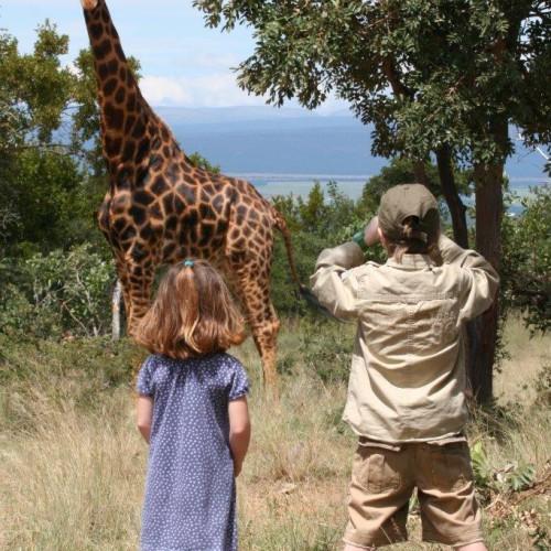 Family safaris (4)