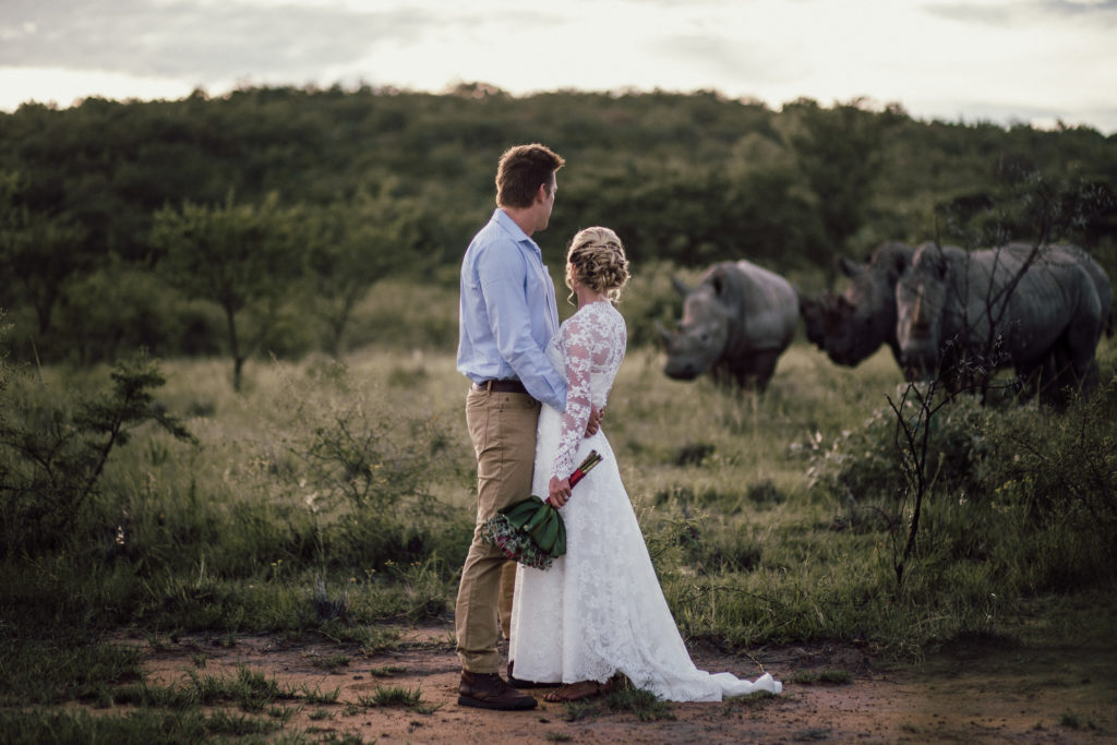 rhinos in wedding photo ant's nest and ant's hill bush homes