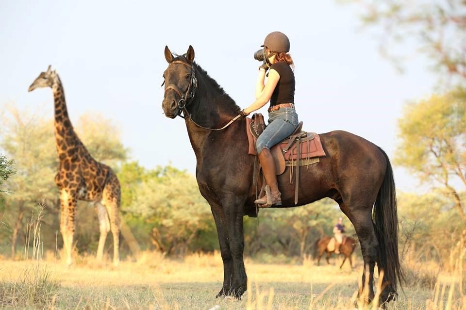 wildlife safari on horseback