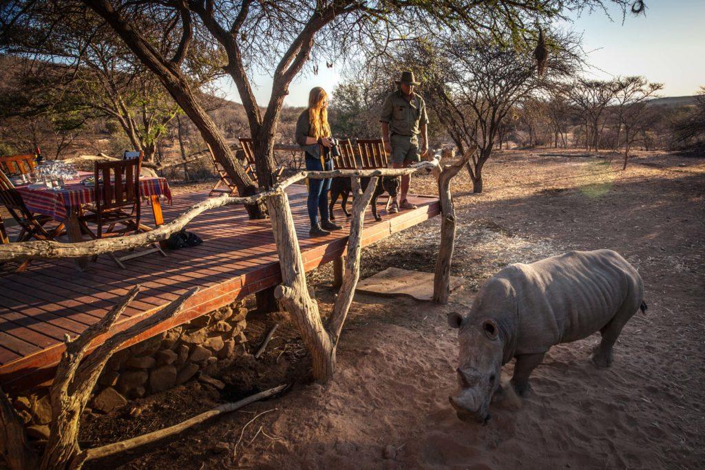 Rhino sundowners at Ant's Nest
