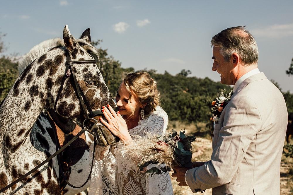weddings in south africa, best wedding venues in south africa, safari wedding south africa
